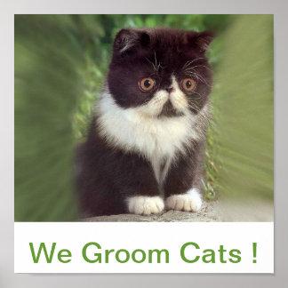 We Groom Cats Sign Print