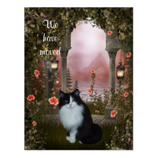 """""""We have moved"""" Cat Postcard"""