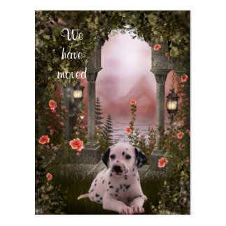 """""""We have moved"""" Dalmation Postcard"""