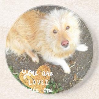 We Love You Sarah Dog Coaster