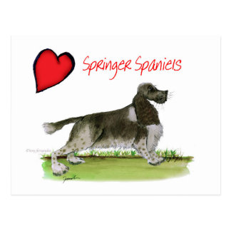 we luv springer spaniels from Tony Fernandes Postcard