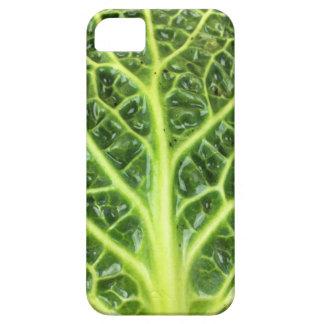 We singing Kohl Savoy cabbage berza chou vert iPhone 5 Case