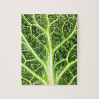 We singing Kohl Savoy cabbage berza chou vert Jigsaw Puzzle