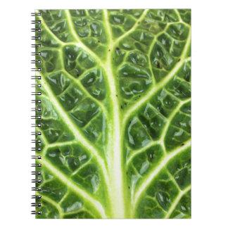 We singing Kohl Savoy cabbage berza chou vert Spiral Notebook