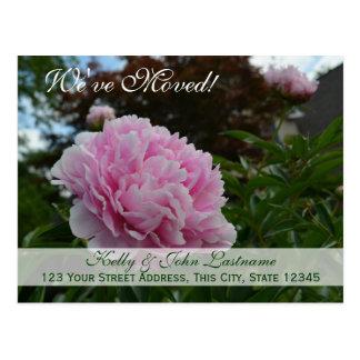 We ve Moved Peony Garden Postcard