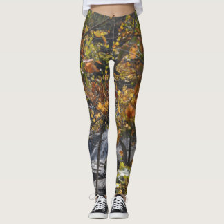 Wearable Art/Photo - Fall Camouflage Leggings