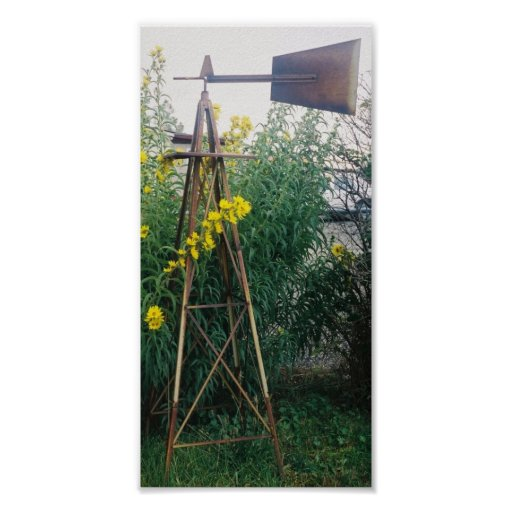 Weather Vane in the fall Print