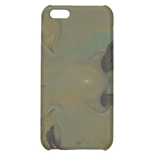 Weathered iPhone 5C Cover