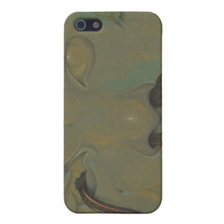 Weathered iPhone 5 Covers