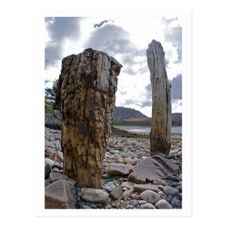 Weathered Net Posts by Loch Kishorn Postcard