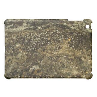 Weathered Stone Effect Design. iPad Mini Covers