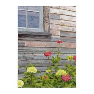 weathered wood and zinnias acrylic print