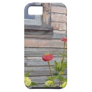 Weathered wood and Zinnias iPhone 5 Covers