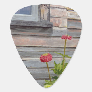weathered wood and zinnias plectrum