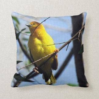 Weaver Pillow
