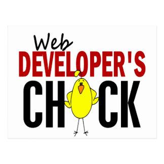 Web Developer s Chick Post Cards