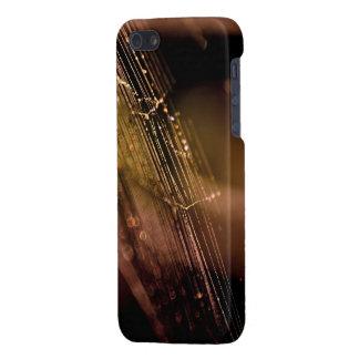 Web Graphics iPhone 5/5S Case