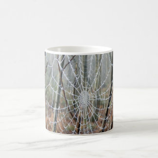 Web of European Garden Spider Mug