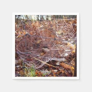 Web of European Garden Spider Paper Napkins