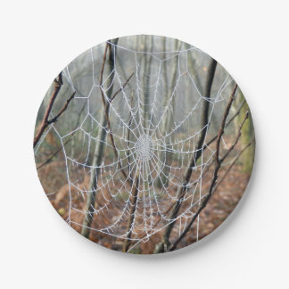 Web of European Garden Spider Paper Plate 7 Inch Paper Plate