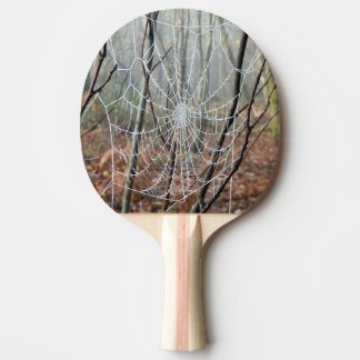 Web of European Garden Spider Ping Pong Paddle