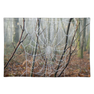 Web of European Garden Spider Place Mats