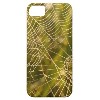 Web of Intrique Case For The iPhone 5