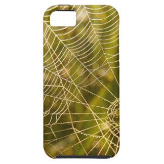 Web of Intrique Tough iPhone 5 Case