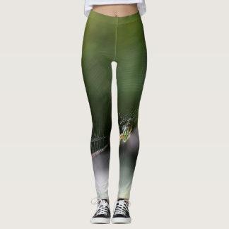 web of life leggings