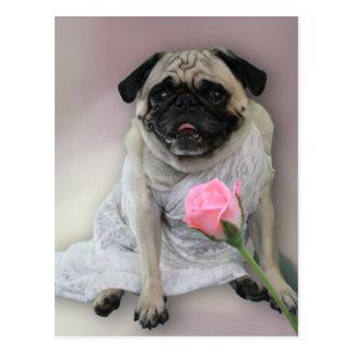 Wedding Day Pug Postcard