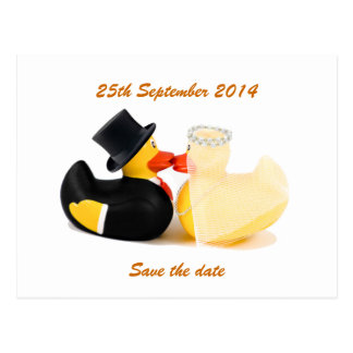 Wedding ducks 2 ... Postcard