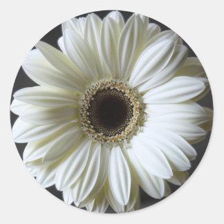 Wedding Gerbera Round Sticker