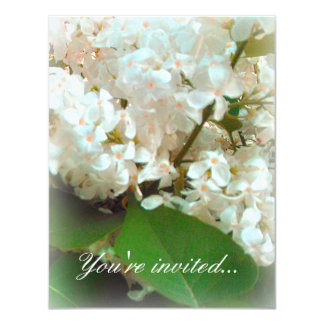 Wedding Invitation - White Lilacs