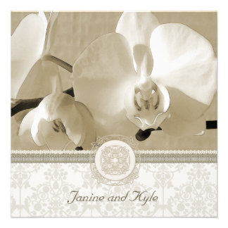 Wedding Invitation White Orchids on Taupe
