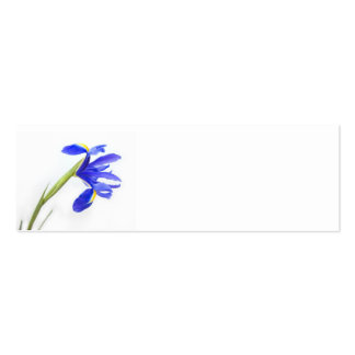 Wedding Place Name Card - purple iris flower Business Card Template