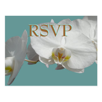 Wedding RSVP White Orchids Postcard