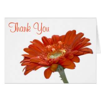Wedding Thank You Card - Orange Daisy Gerbera