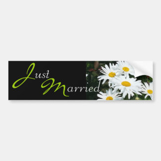 Wedding White Daisies Bumper Sticker
