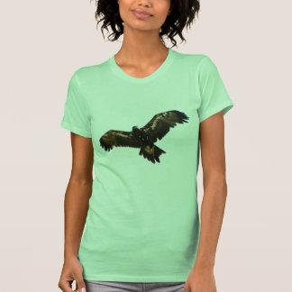 Wedgetail Eagle Shirt