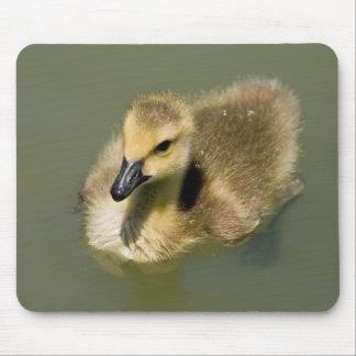 Wee Goose Mousepad