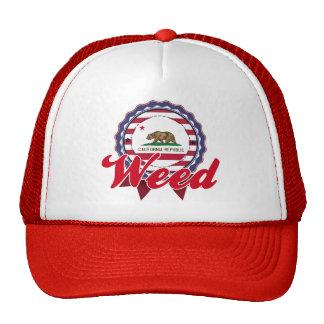 Weed, CA Trucker Hats