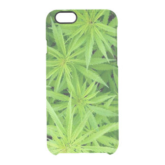 Weed iPhone 6/6S Clear Case