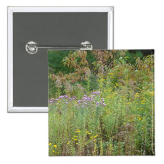 Weeds Button