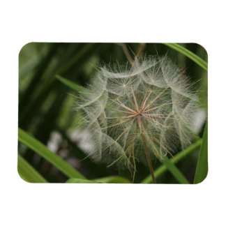 Weeds in my Flower Bed Rectangular Photo Magnet