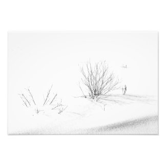 Weeds in Snow Photo Print