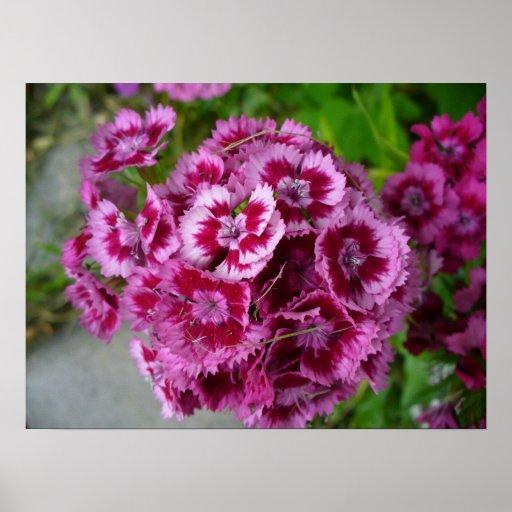 Weeds V Print
