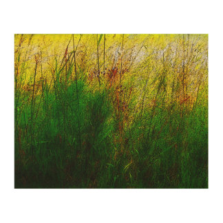 Weeds Wood Canvas