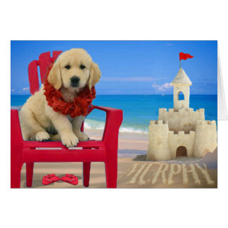 Week 8 - Beach Murphy Card