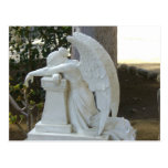 Weeping Angel Post Cards
