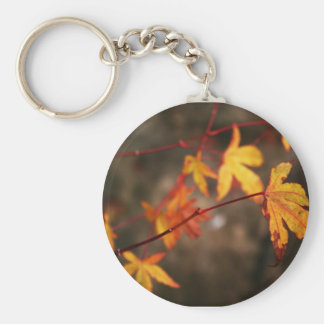 Weeping Autumn Key Chain